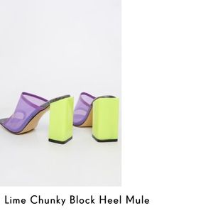 Chunky Sandal Heel